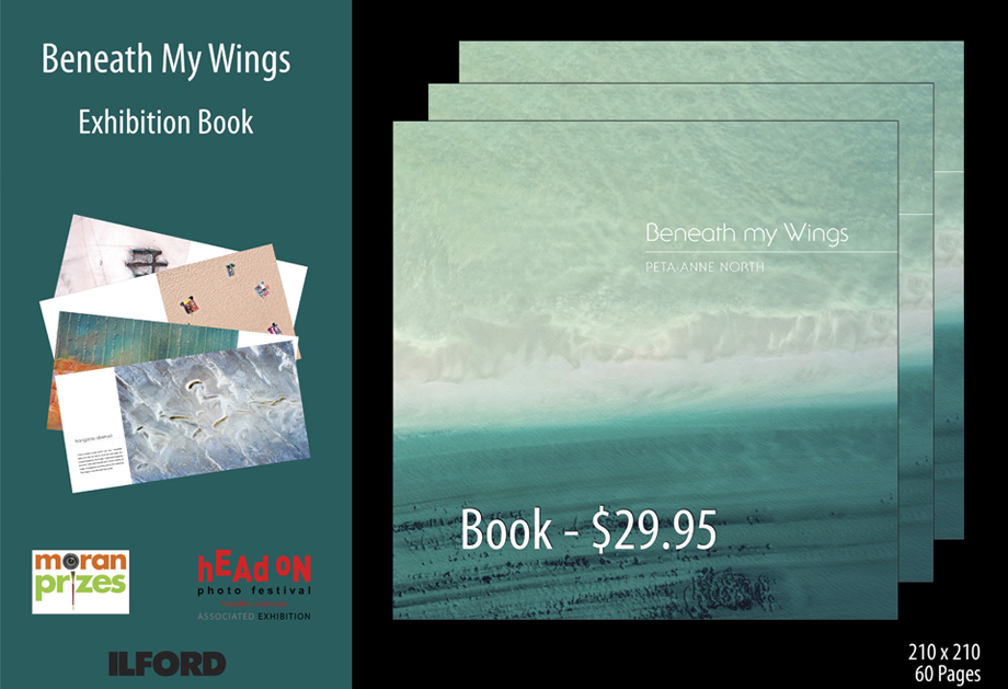 Beneath My Wings Book